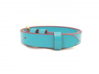 Classic Belt in Turquoise and Red