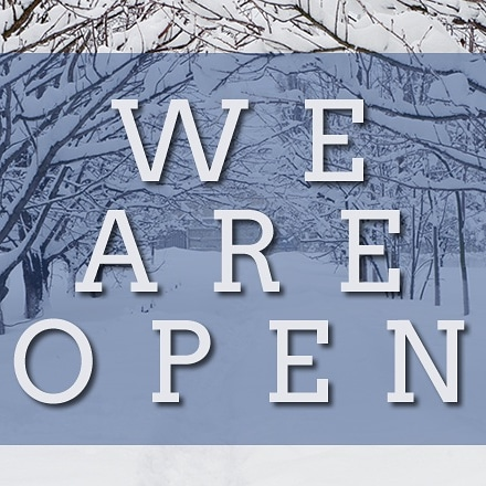 Open in the snow